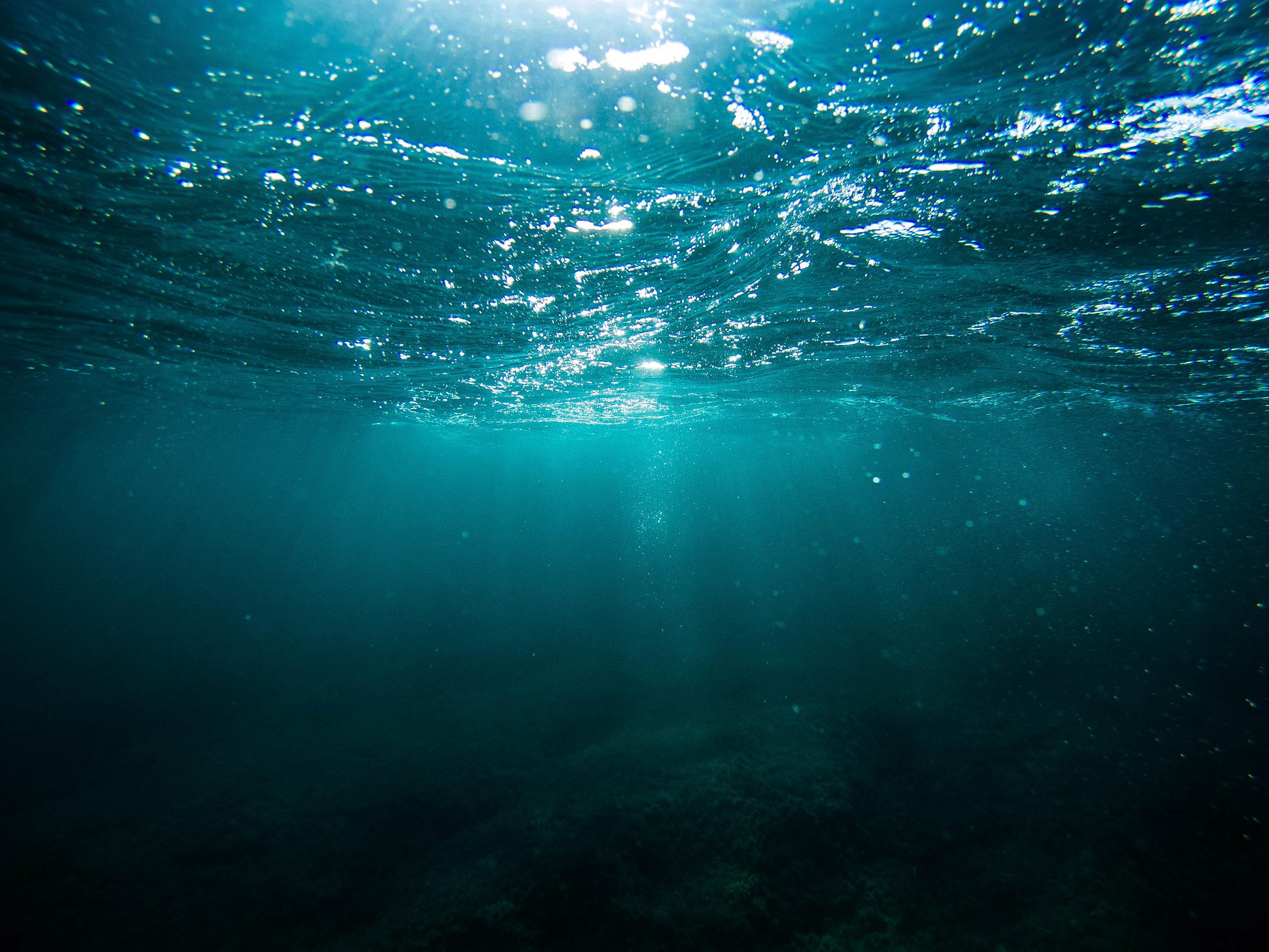 wunderwasser – il video